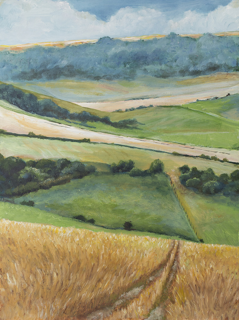 south downs way acrylic artwork